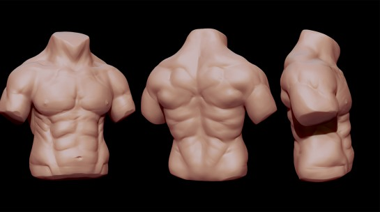 Torso Speed Sculpt